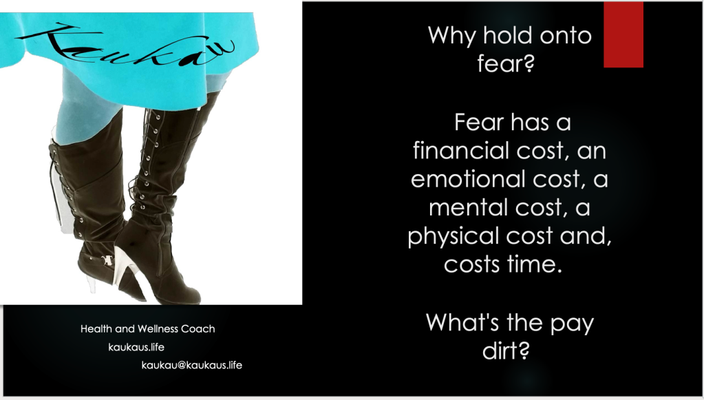 Why hold onto fear?    Fear has a financial cost, an emotional cost, a mental cost, a physical cost and, costs time.    What's the pay dirt? 